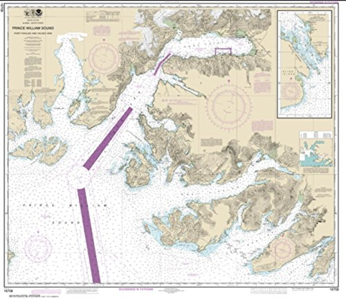 (NOAA Chart 16708-Prince William Sound-Port Fidalgo and Valdez Arm; Tatitlek Narrows - Water-Resistant - by East View Geospatial)