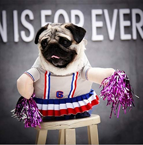 WORDERFUL Halloween Pet Dog Costume Cheerleader Dress Skirt Cheerleading Hand Flowers Funny Dramatic Polyester for Small Medium Dogs (M) ()