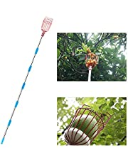 BestFire Fruit Picker Tool, 10-Foot Fruit Picking Pole with Basket Telescoping, Lightweight Fruit Harvester Tool Stainless Steel Fruits Catcher Tree Picker for Getting Apple, Fruits Tree