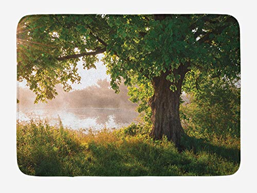 (Weeosazg Tree Bath Mat, Ancient Tree Leafage in Mystical Landscape Foggy Scenery and Stream View Print, Plush Bathroom Decor Mat with Non Slip Backing, 31.5 X 19.7 Inches, Green Dust)
