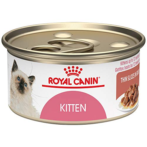 Royal Canin Feline Health Nutrition Kitten Canned Cat Food, 3 oz (Pack of 24) (Best Food For Persian Cats)