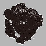 What One Becomes (Bonus Track)