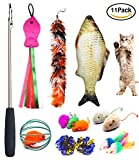 Cat Toys Set - Cat Retractable Teaser Wand - Catnip Fish - Interactive Cat Feather Toy - Mylar Crincle Balls - Two Cotton Mice - Two Fluffy Mouse - Pack of 11