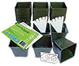 Set of 36 Plastic Nursery Plant Pots, ''Seed Shaker'' Card and 5 Plant Labels. Color: Green, Seedling Containers