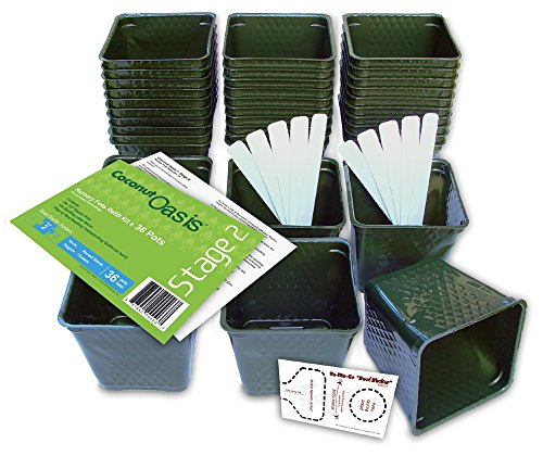 Set of 36 Plastic Nursery Plant Pots, ''Seed Shaker'' Card and 5 Plant Labels. Color: Green, Seedling Containers by Coconut Oasis