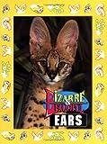 Bizarre and Beautiful Ears, Santa Fe Writers Group Staff, 1562611844