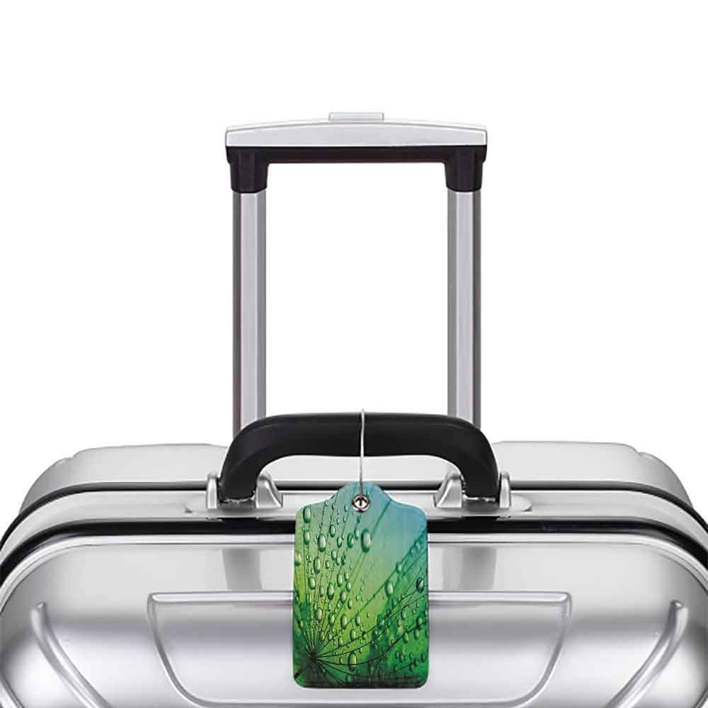 Small luggage tag Flower Decor Floral Theme Macro Photo of Dandelion Seeds with Water Drops Digital Image Quickly find the suitcase Fern Green W2.7 x L4.6