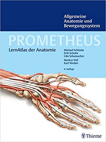 PDF Download PROMETHEUS Allgemeine Anatomie und Bewegungssystem ...
