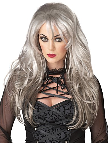 Gothic Angel Halloween Costume (California Costumes Fallen Angel Wig, Silver, One)