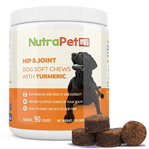 NutraPet Turmeric Dog Joint Support Plus Perna Mussel - Supports Healthy Dog Hip Mobility in a Tasty Treat + Glucosamine Chondroitin and MSM for Extra Support - 90 Soft Chews
