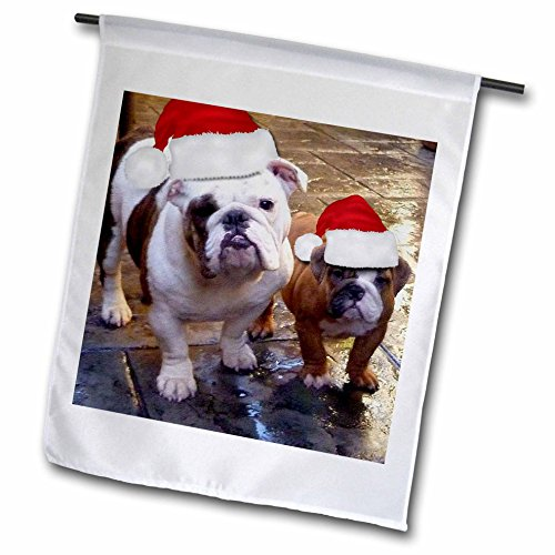 Pillow Bulldogs Santa (3dRose Edmond Hogge Jr Dogs - English Bulldog Christmas Wearing Santa Hats - 12 x 18 inch Garden Flag (fl_63087_1))