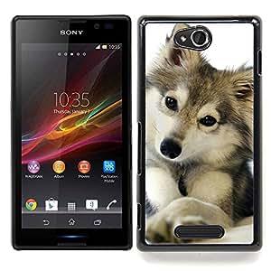Eason Shop / Premium SLIM PC / Aliminium Casa Carcasa Funda Case Bandera Cover - Lobo Invierno Nieve Mascotas Canine - For Sony Xperia C