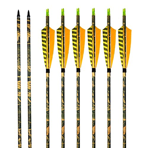 ALBERTU Carbon Arrows 31 Inch Practice Hunting Arrow with Turkey Yellow Printed Feathers and Removable Tips for Compound or Recurve Bow (6 - Arrows Carbon Camo