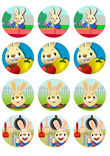 Harry the Bunny ~ Cupcake Topper ~ Edible Frosting Image