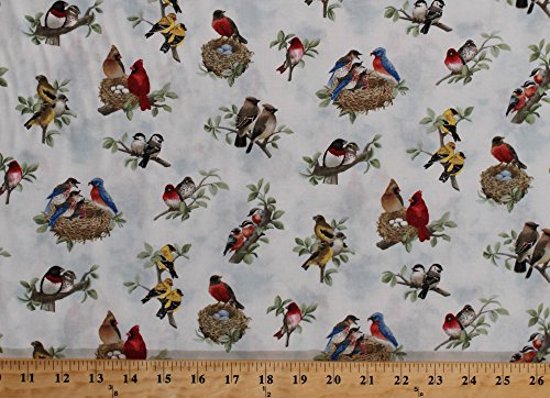 Cotton Beautiful Birds Cardinals Robins Nests Eggs Tree Branches Azure Cotton Fabric Print by the Yard (4310-azure)