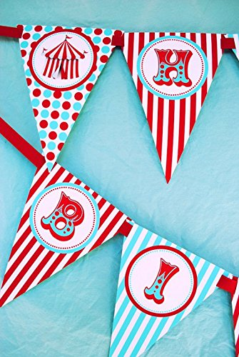 Circus Carnival Happy Birthday Banner Pennant -