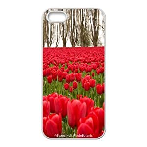 K-G-X Phone case For Apple Iphone 5 5S Cases Case-Pattern-18 Beautiful Holland Tulip Flower Protective Back Case