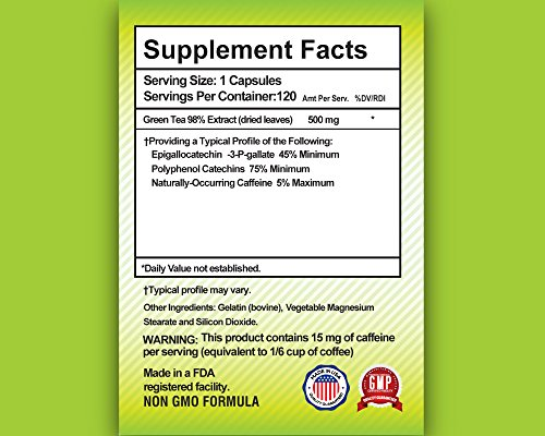 Nutrifect Nutrition Green Tea Extract Capsules, Fat Burning Formula with EGCG for Weight Loss, Brain Health, and a Natural Energy Boost, 120 Capsules