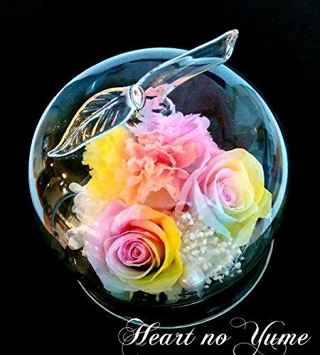 【楽天ランキング1位】【高級プリザーブドフラワー】 パステルレインボーローズ レインボーカーネーション 林檎 ガラスドーム プリザーブドフラワー 『#ガラスの林檎』 B01M0NXSBB