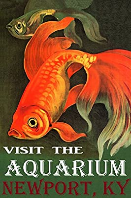 """Golden RED Fish Visit The Aquarium in Newport Kentucky Travel Tourism 20"""" X 30"""" Image Size Vintage Poster REPRO Matte Paper WE Have Other Sizes"""