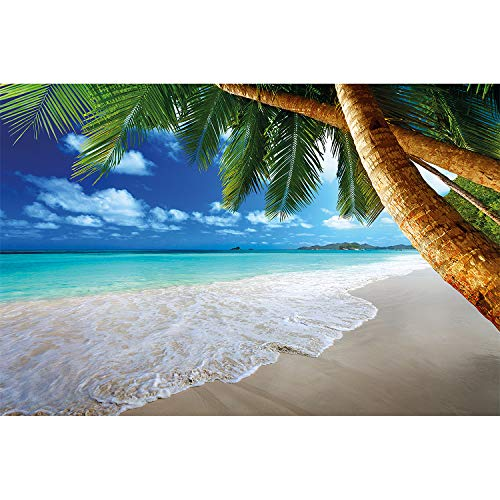 (Great Art Palm Beach Wall Decoration - Caribbean Picture Dream Bay Poster Paradise Nature Island Trees Tropics Sky Wallpaper (55 Inch x 39.4 Inch))