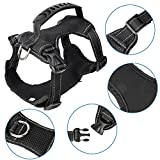 kiwitatá Front Range No Pull Dog Harness,Adjustable Reflective Pet Dog Vest Harness Safety Handle Two Leash Attachments Small Medium Large Dogs Outdoor Walking Running