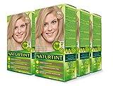Naturtint Permanent Hair Color - 9N Honey Blonde, 5.6 fl oz (6-pack)
