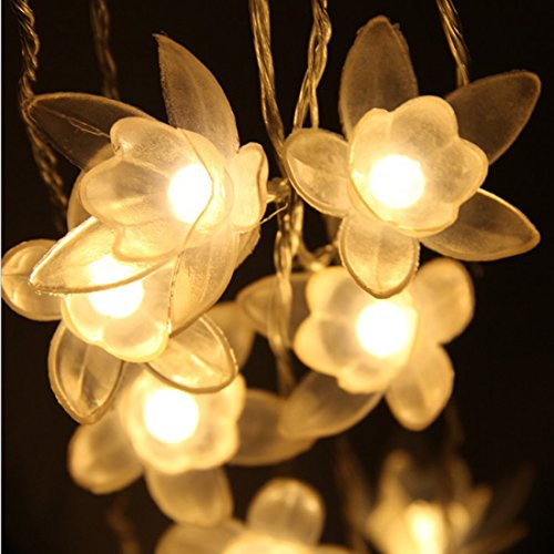 40 LED Lily Shape Flower String Lights,16.4Ft Fairy Led String Lights Battery Powered for Party,Wedding,Xmas,Decoration,Gardens,Patios.(Warm White) ()