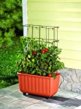 Rolling Self-Watering Tomato Planter and Tomato Tower Support - Polypropelene Planter and Powder Coated Steel Tower - Terra Cotta Colored Planter