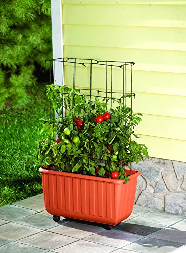 Plow & Hearth Rolling Self-Watering Polypropylene Tomato Planter and Steel Tomato Tower Support ()
