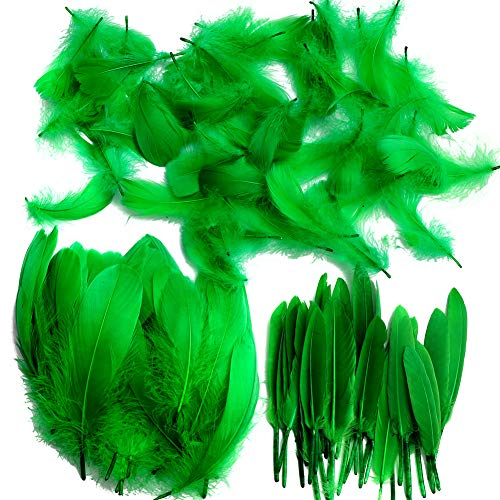 Feather for Crafts,250 Pcs Coloured Feather Striking Feathers for DIY Dream Catchers Natural Crafts Feathers for Wedding/Party/Decorations(3 Sizes) (Green)