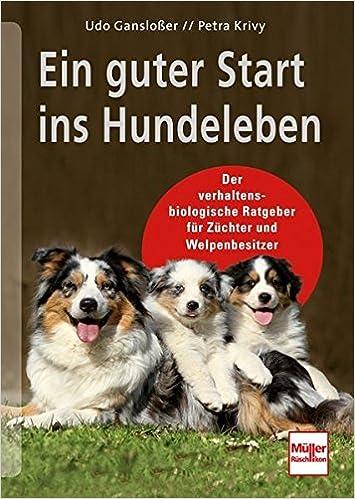Ein guter Start ins Hundeleben