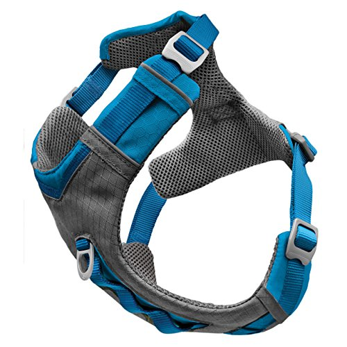 Kurgo Journey Air Dog Harness for Everyday Adventure, Reflective, Active Harness, Dog Running Harness, Dog Hiking Harness, Dog Walking Running, Blue/Grey, Large