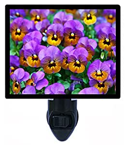 Night Light - Purple Pansies - Flowers - Garden