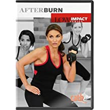 Cathe Friedrich's Low Impact Series: Afterburn