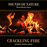 Crackling Fire (Sounds of Nature)