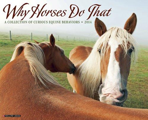 Why Horses Do That 2014 Wall Calendar