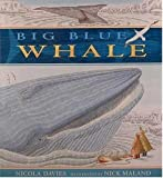 Big Blue Whale, Nicola Davies, 156402895X