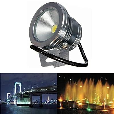 10W Under Water LED Flood Wash Waterproof Spot Lightt Pool Outdooors 12V (Color White)