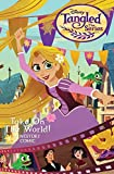 download ebook disney tangled: the series: take on the world cinestory comic (disney tangled: the series cinestory comic) pdf epub