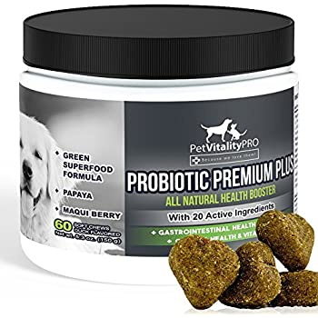 Probiotics for Dogs with Natural Digestive Enzymes ● Dog Probiotics Chewable ● 4 Bill CFUs / 2 chews ● Dog Diarrhea Upset Stomach Yeast Gas Bad Breath Immunity Allergies Skin Itching Hot Spots