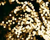 Lighted Tree Abstract Art Photography Print, Light Sparkles, Gold and Black Wall Decor, Modern Wall Print 5x7,8x10, 11x14, 12x16,16x20