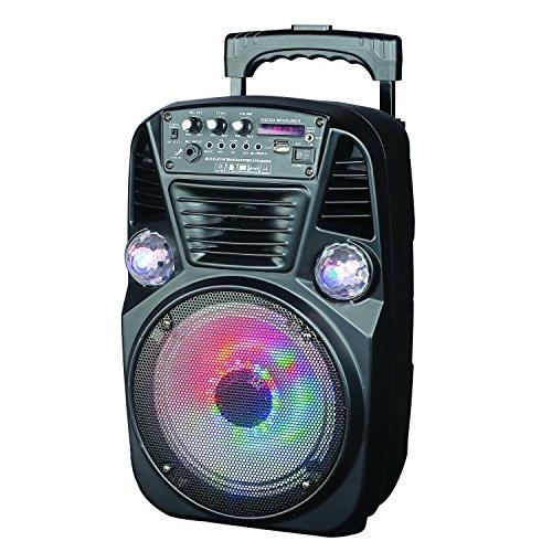 Supersonic Portable Bluetooth DJ Speaker with FM Radio 8-Inch, Black (IQ-3078DJBT)