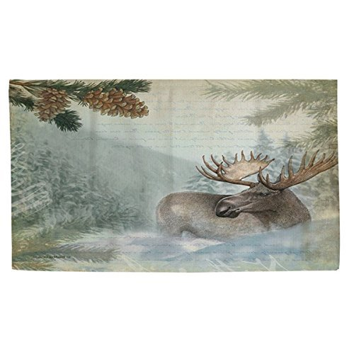 OTSK 2'x3' Brown Aqua Blue Moose River Wildlife Printed Runner Rug, Southwest Cabin Themed, Indoor Animal Pattern Living Room Rectangle Carpet, Soft Synthetic, Hunting Wild Nature Lodge Cottage