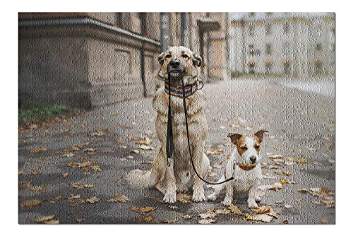 Mixed Breed Dog and Jack Russell Terrier Walking in the Park Photography A-90745 (20x30 Premium 1000 Piece Jigsaw Puzzle, Made in USA!)