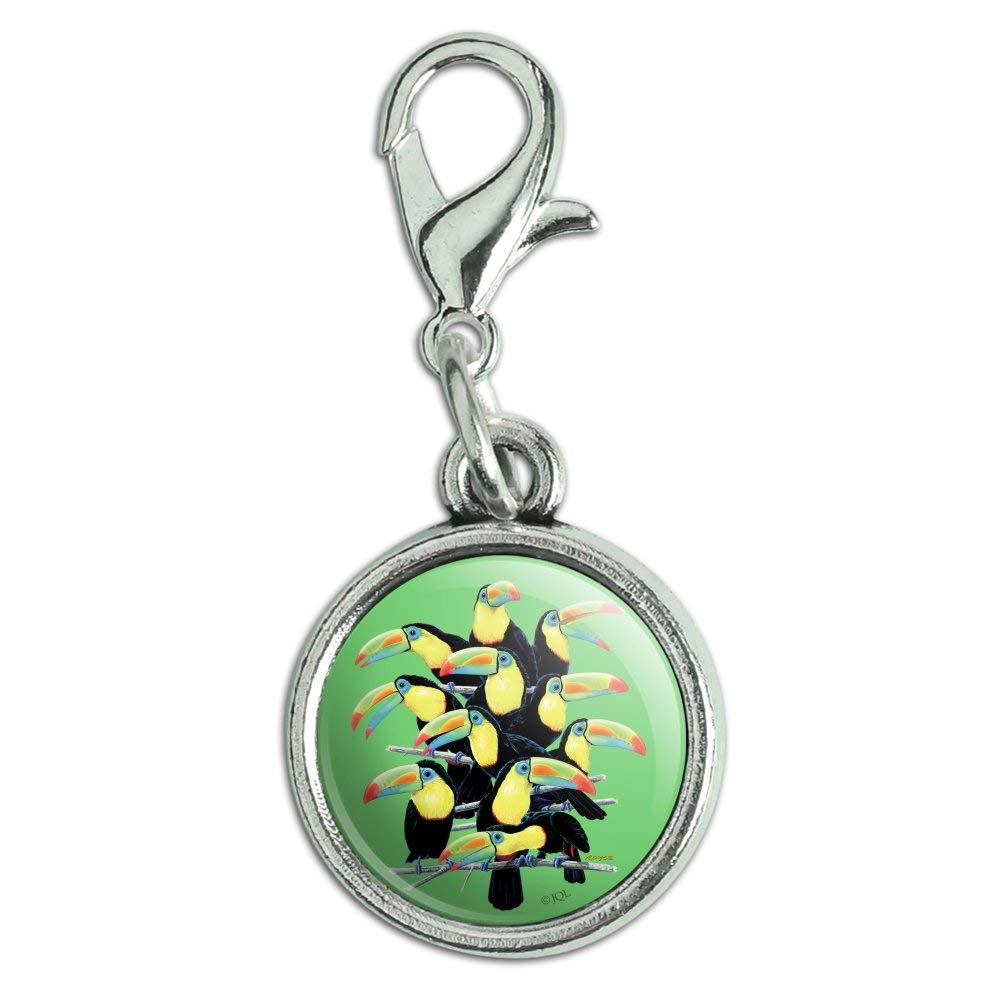 GRAPHICS /& MORE Colorful Toucan Town Rainforest Birds Antiqued Bracelet Pendant Zipper Pull Charm with Lobster Clasp