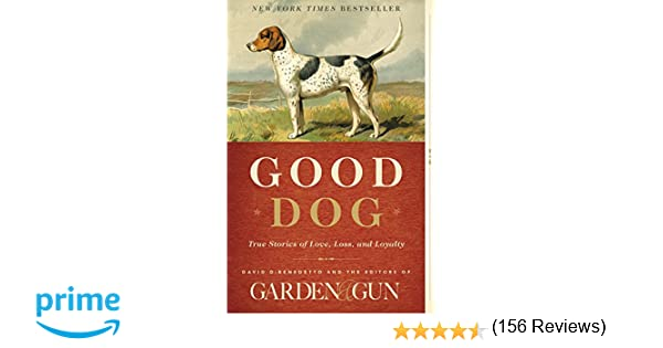 essay of pet dog