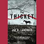 The Thicket   Joe R. Lansdale