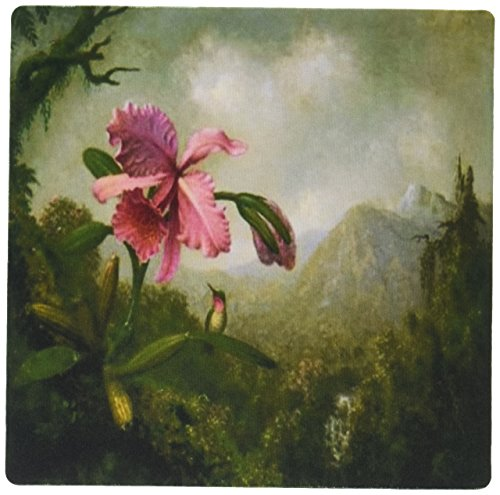 3dRose LLC 8 x 8 x 0.25 Inches Mouse Pad, Image of Heades Vintage Painting of Orchid, Hummingbird and Mountain (mp_163198_1)