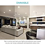 Luxrite 5/6 Inch Gimbal LED Recessed
